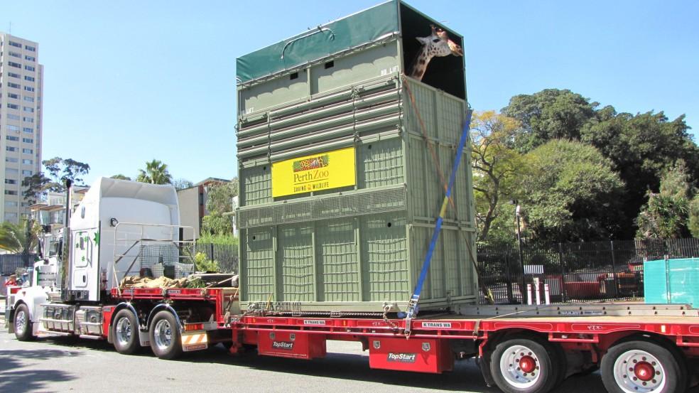 Truck-Giraffe-2.jpg